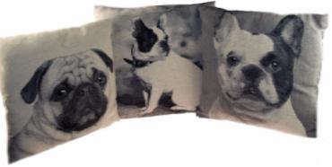 Set Of 3 Luxury 45cm Bull Dog / Pug Cushions - Home Interior Gift