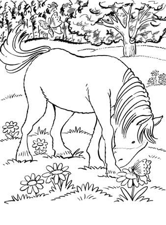 Dover Vol 1 Horse Coloring Pages Drawings Art