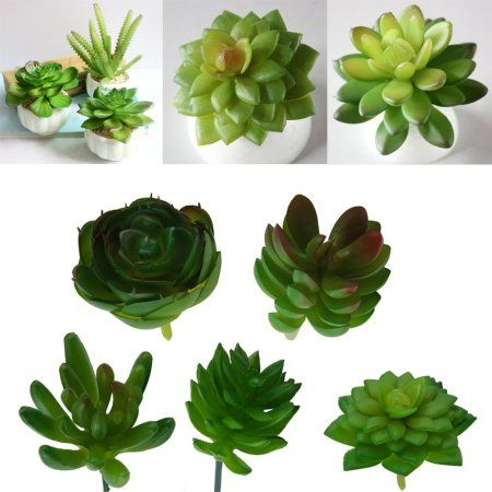 ... China Mini Artificial Succulents Suppliers: Artificial Mini Plastic  Miniature Succulents Plants Art Garden Home Decor Beautiful Decoration  Exhibition