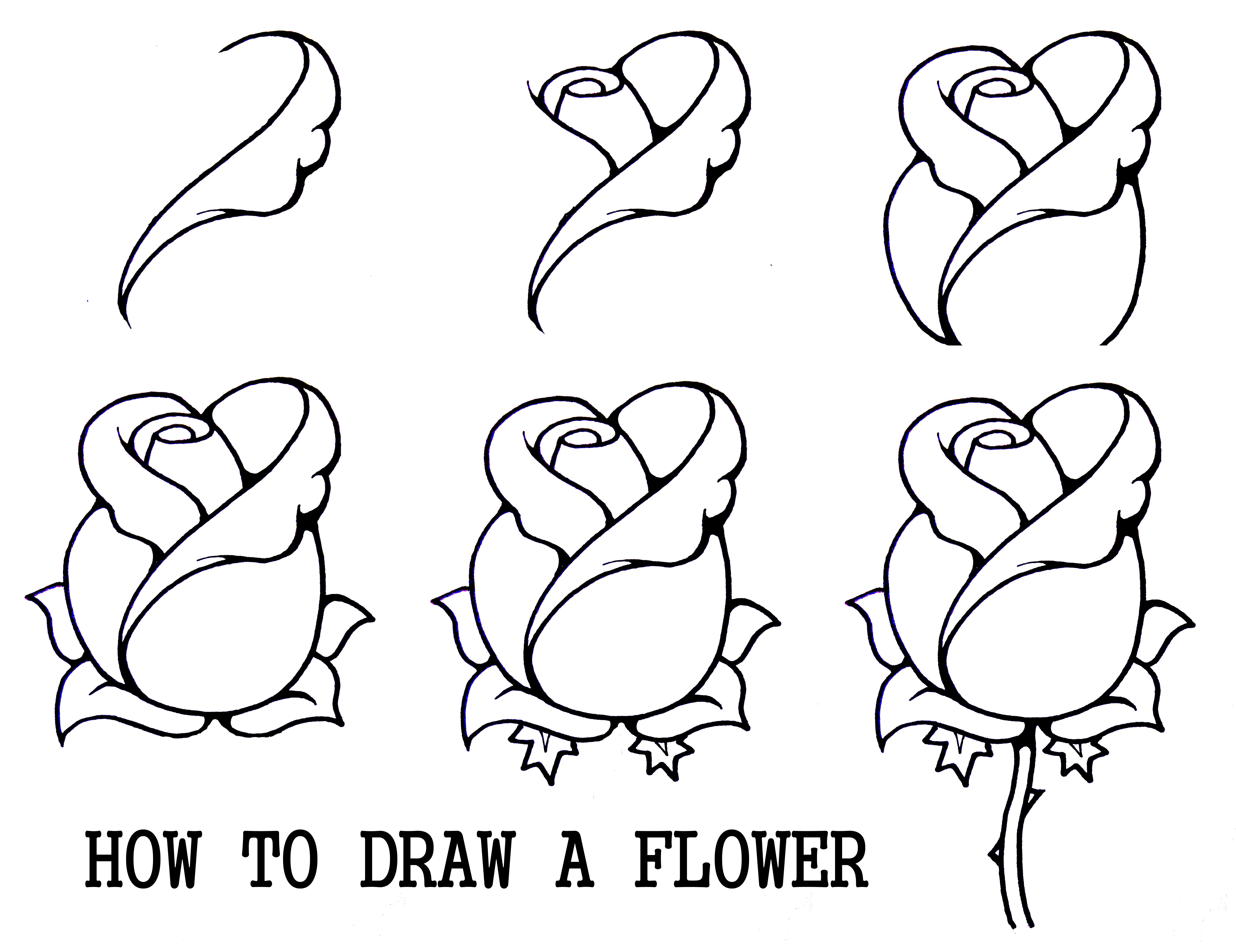line drawings of flowers free download - Children Drawing Book Free Download
