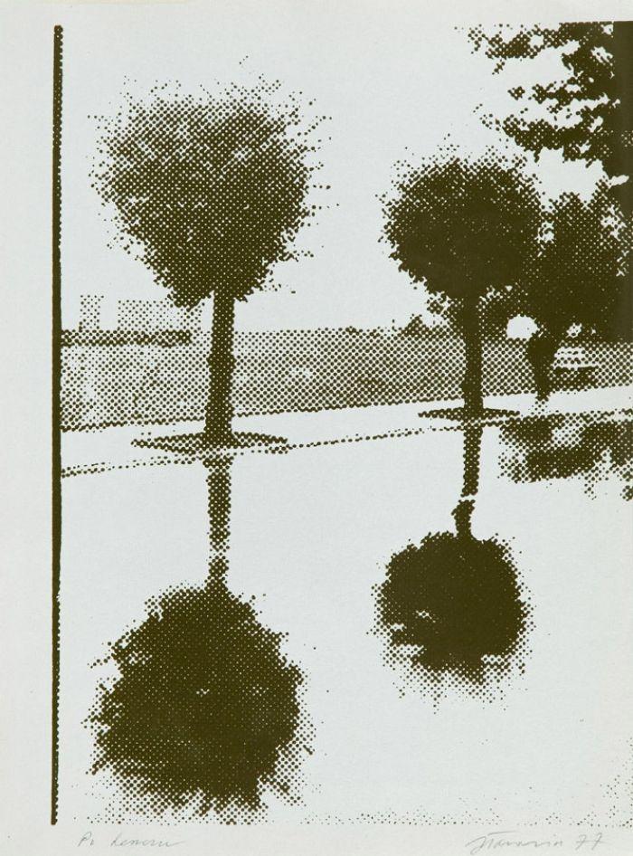 Jan Tarasin - Po deszczu, 1977