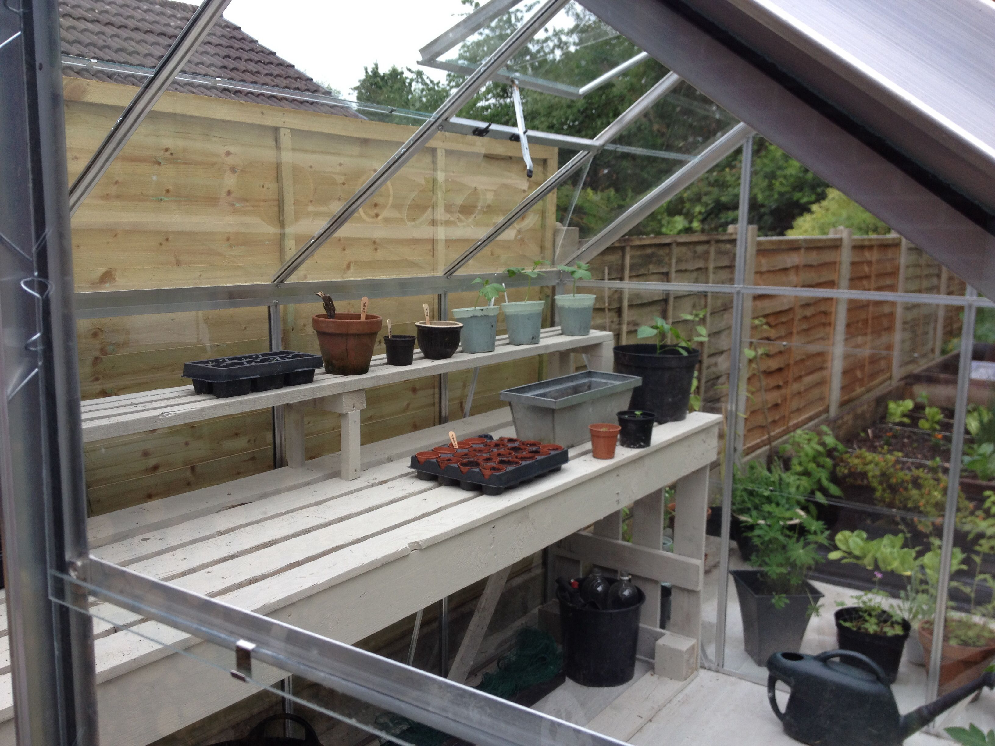 Painted Greenhouse Staging Made From Recycled Pallets Love It Greenhouse Staging Greenhouse Greenhouse Benches