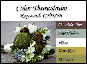 Color Throwdown: Color Throwdown #258
