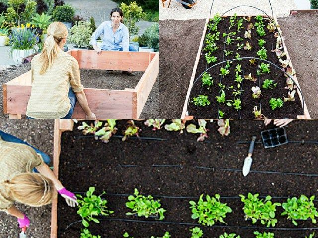 Come costruire un letto rialzato passo dopo passo guida giardino orto - Costruire un giardino ...