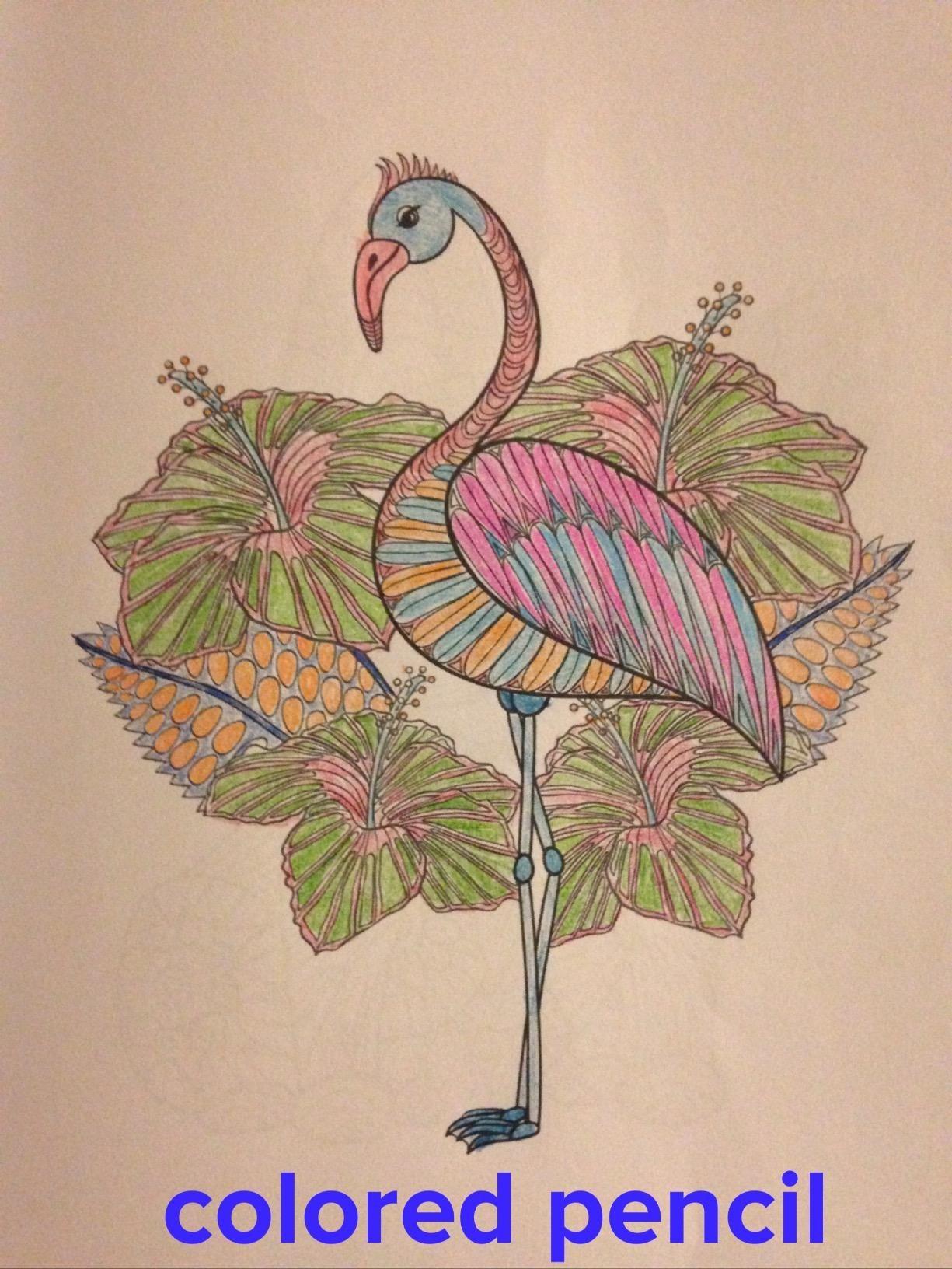 Adorable Animals: Color Zen Adult Coloring Book: Vanessa Lee: 9781523682089: Amazon.com: Books