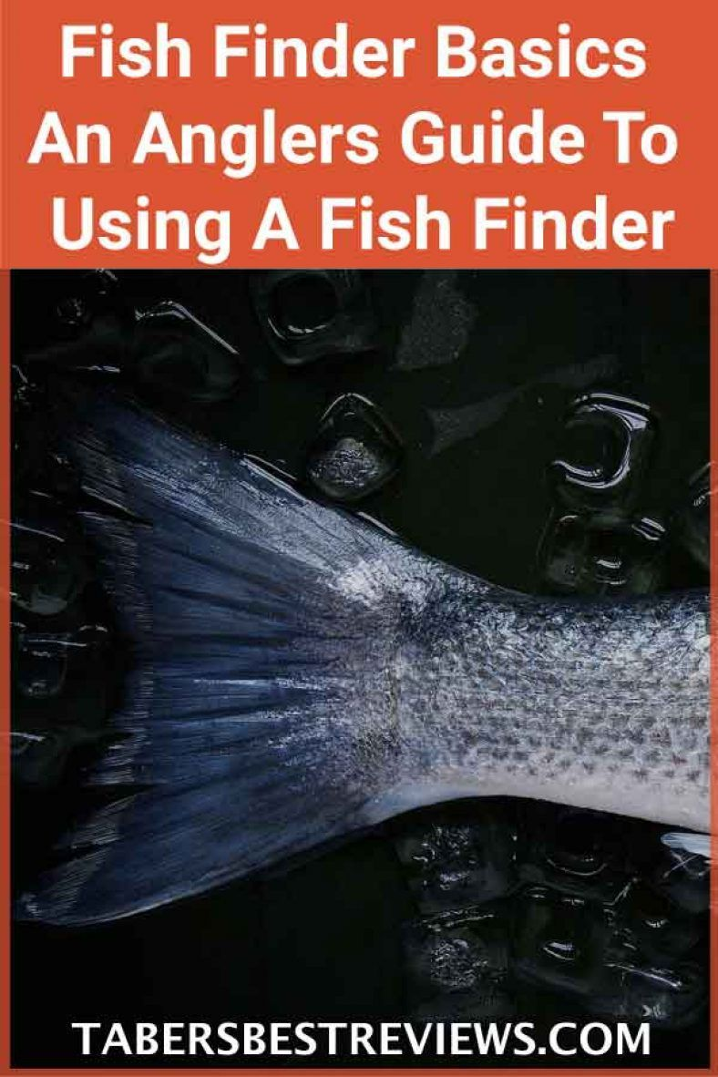 Fish finder basics an anglers guide to using a fish