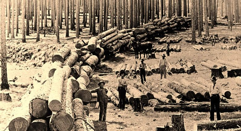 Creative Nonfiction Prompt Industry Is One Of The Greatest Factors Contributing To The Unique Character Of A Place What Indust Forestry Sawmill Texas History