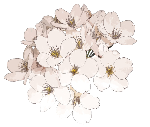 Black Flower Watercolor Art By Tae Lee: Flowers Transparent Black And
