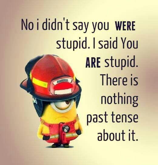 I Didn't Say You Were Stupid