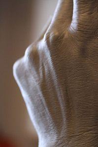 Hand detail