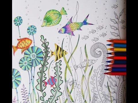 Lost Ocean Double Page Color Along For Beginners Part 2 Lost Ocean Coloring Book Lost Ocean Johanna Basford Coloring Book