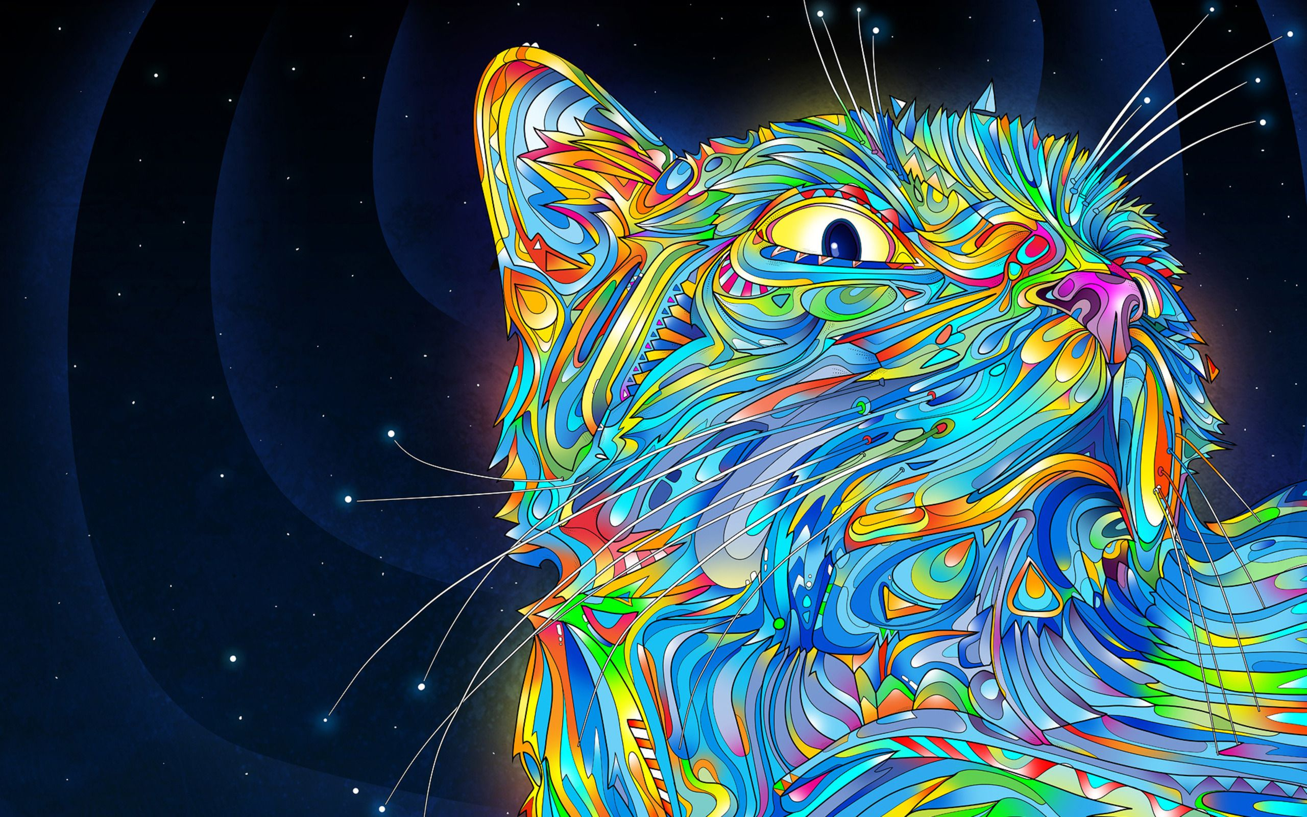 Mi Arte Definition Art Colorful Cat Graphic Hd Wallpaper High Definition Hd