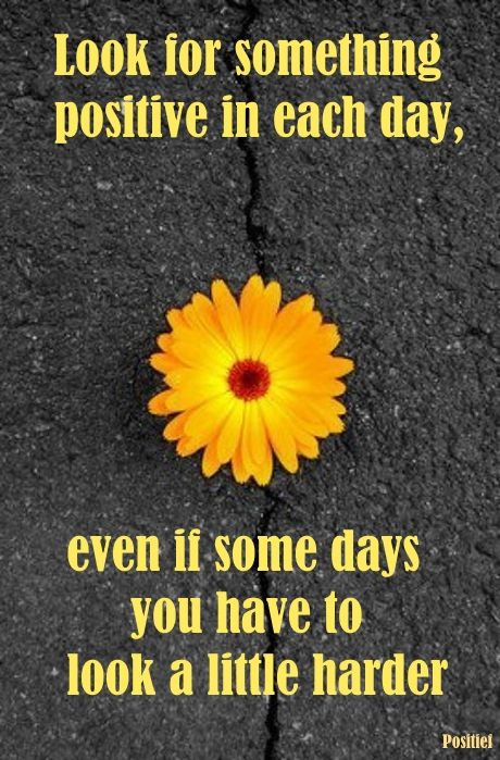 Look For Something Positive In Each Day Quotes Sayings Positief Yellow