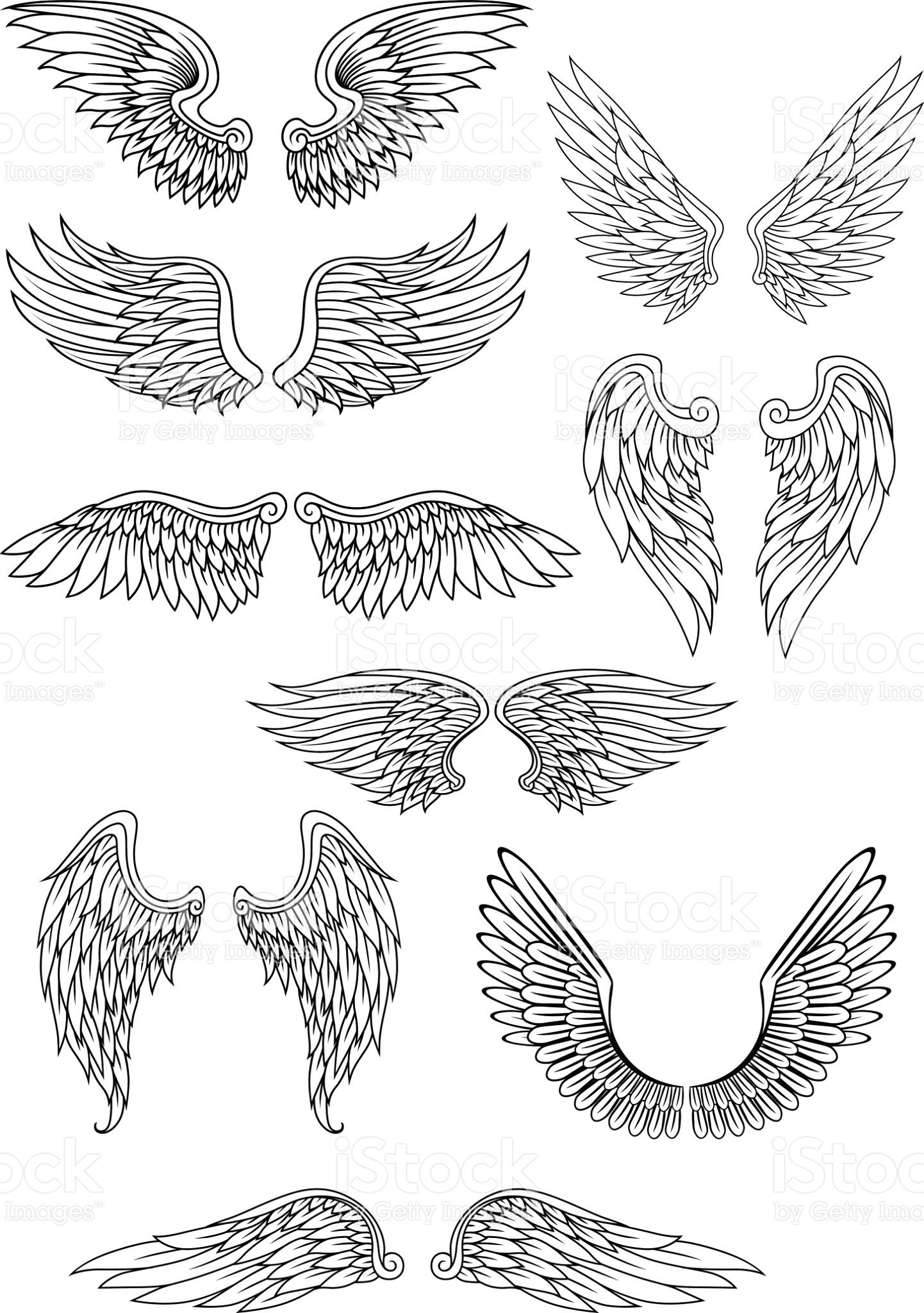 Heraldic bird or angel wings set isolated on white for religious ...
