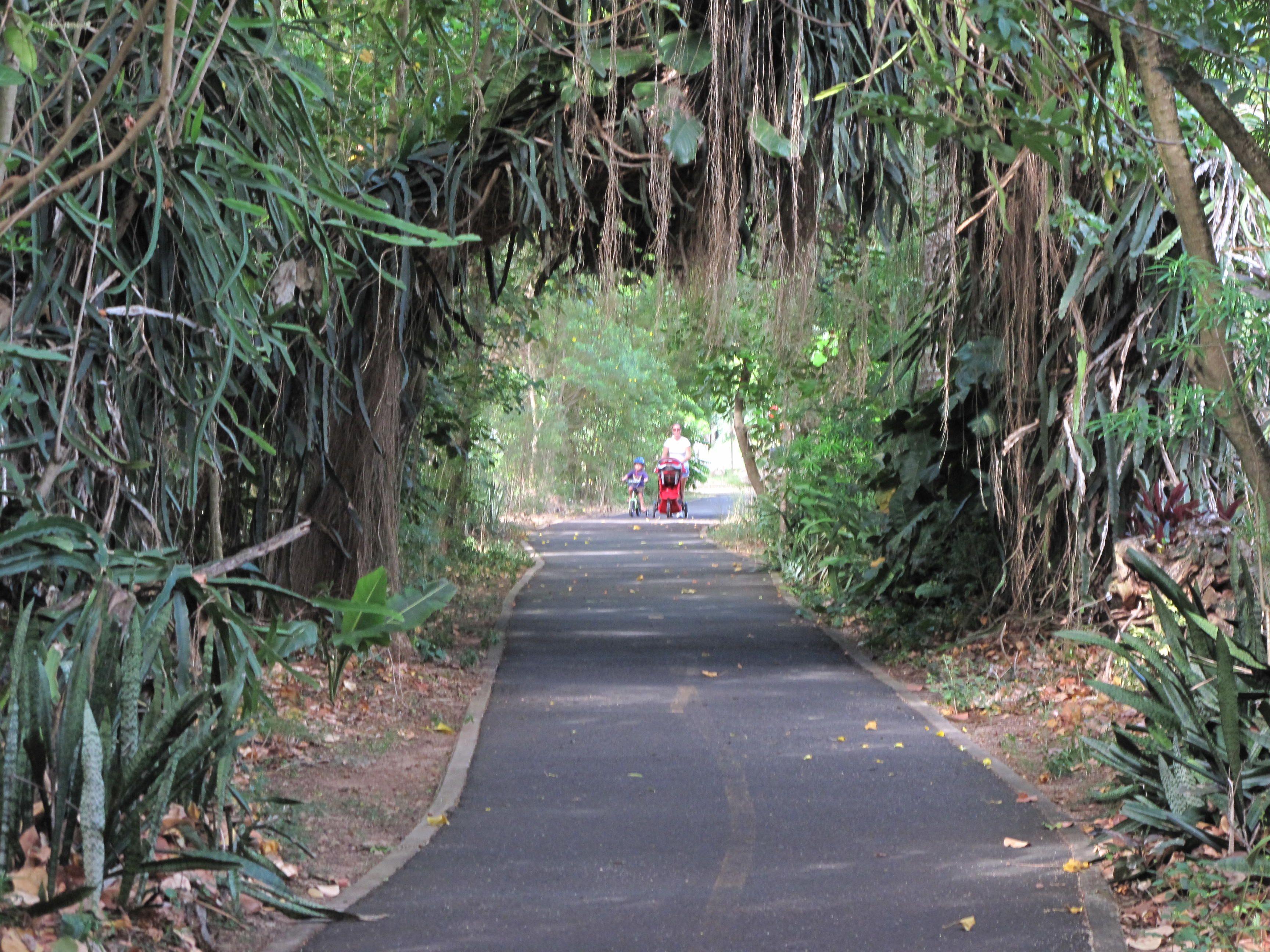 Sunset Beach Bike Path North Shore Oahu | North Shore Oahu ...