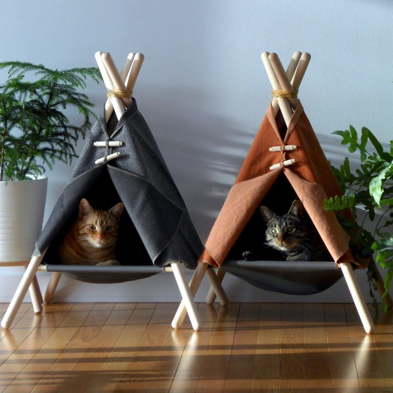 the cat bed that everybody wants plus deco interior design blog design blog interior design cuccia per gatti