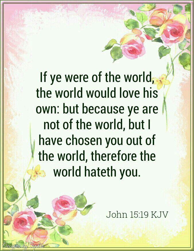 Image result for john 15:19