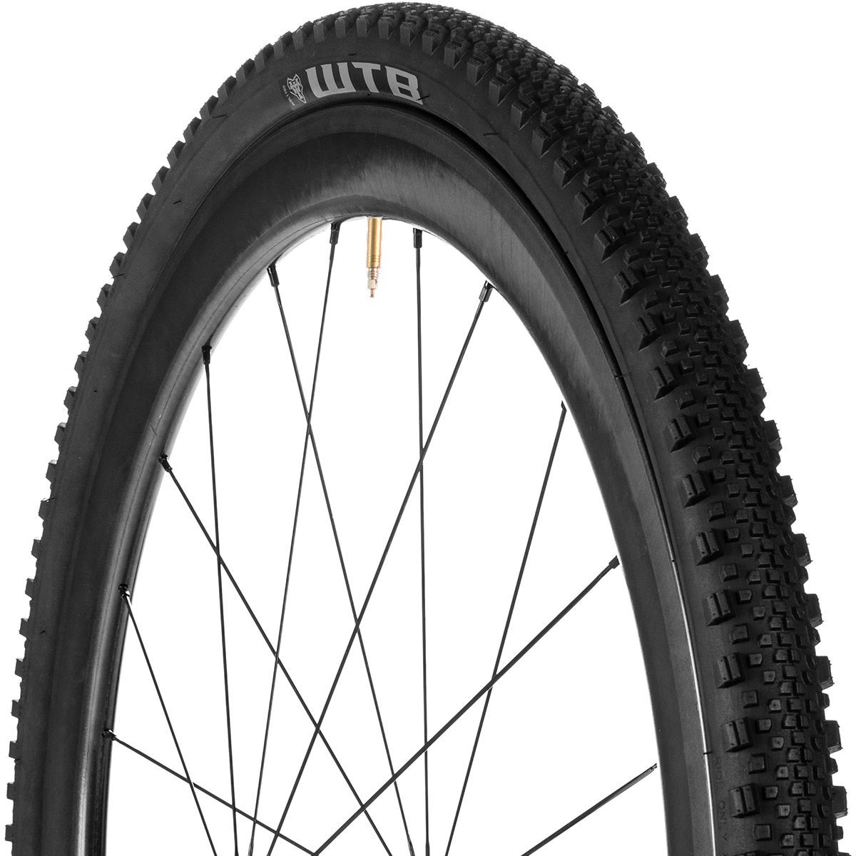 Wtb Raddler Tcs Light Tire Tubeless In 2020 Mountain Bike