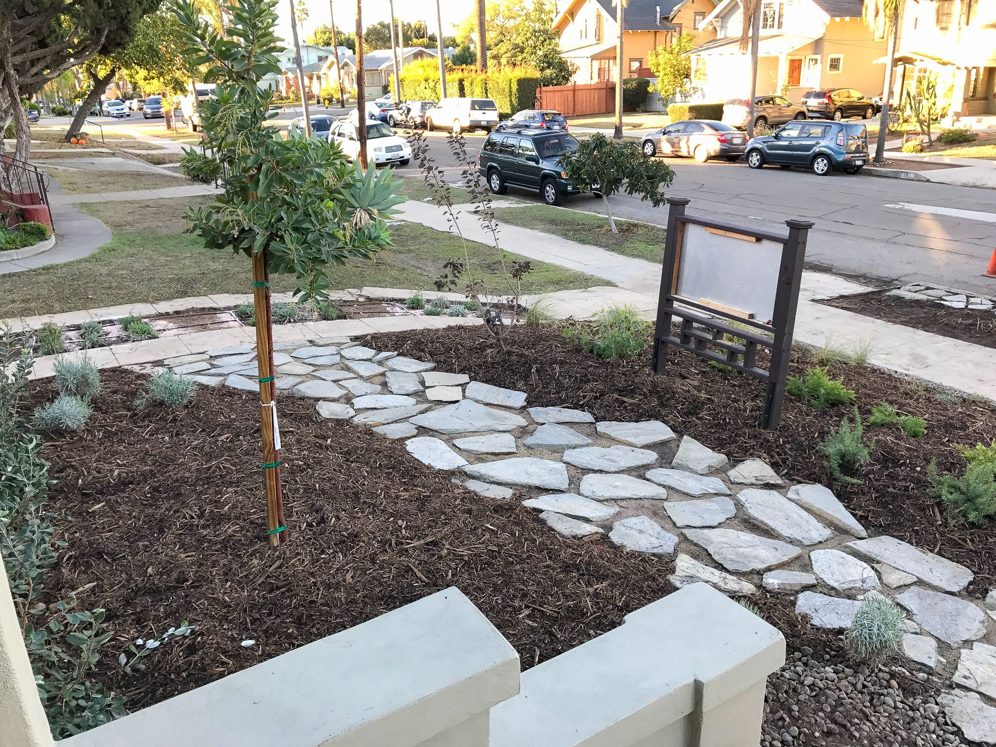 Installation Of The Front Yard Garden Front Yard Garden California Native Plants Drought Tolerant Garden