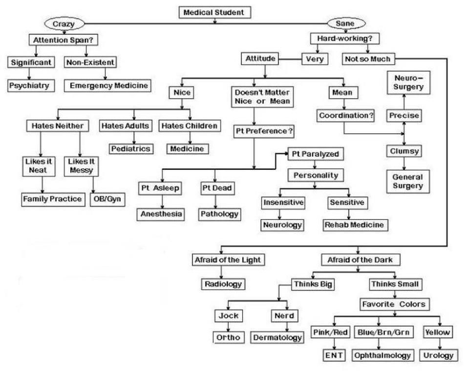 Medical Careers A Flow Chart On How To Choose A Medical Specialty