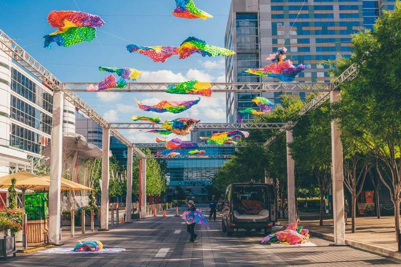 Things To Do In Houston >> Actually Cool Things To Do When Someone Visits Houston