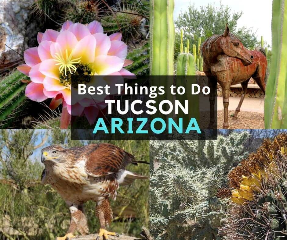 Things To Do In Tucson Arizona Guide To Best Tourist Attractions In 2020 Tucson Arizona Tucson Things To Do