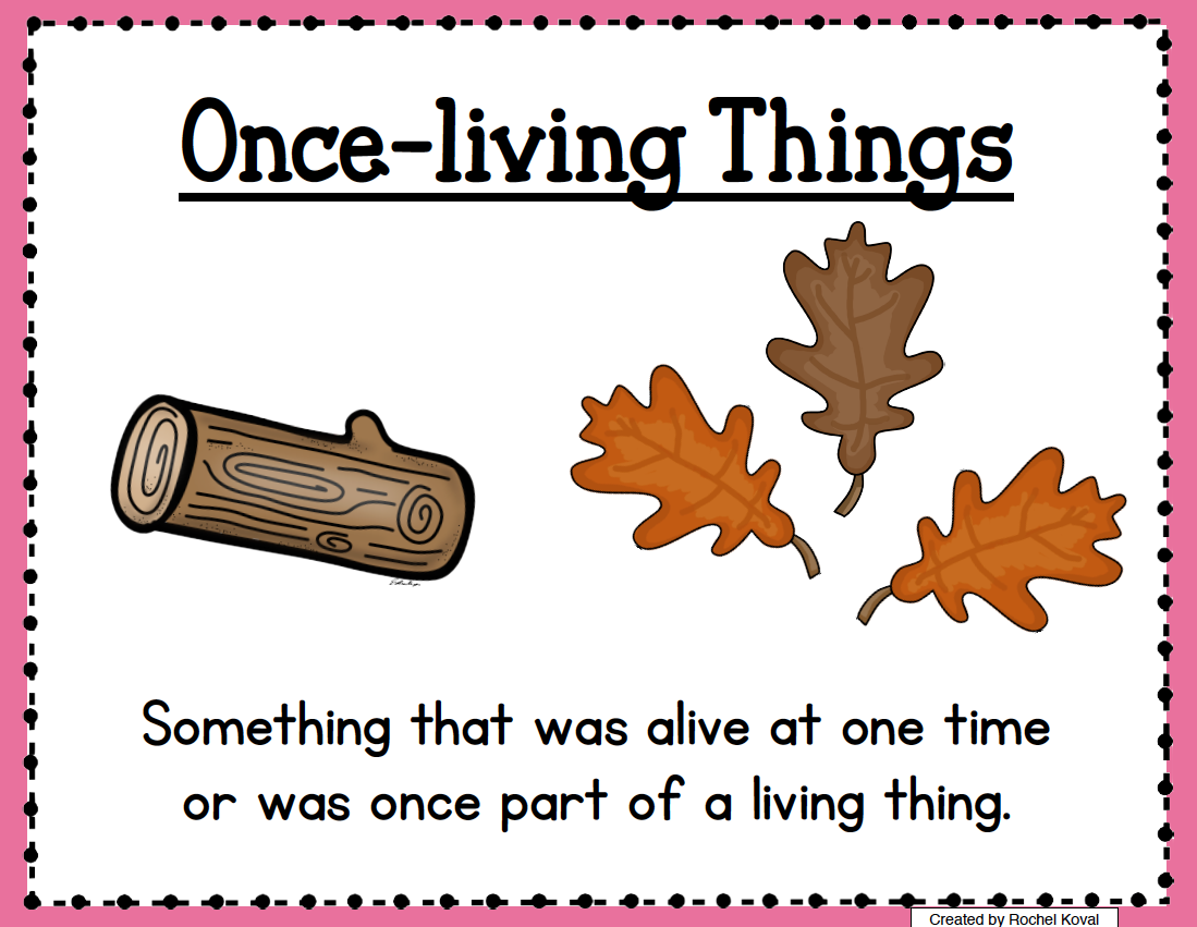 Living and nonliving updated  Your students will enjoy learning about living, non living, and once-living things with this unit! Take a clipboard and pencil and explore the outdoors. Predict what they will find. Record observations- What do they discover? What are they wondering? Gather data and bring into the classroom for an interactive display! Make a flip book and more...  Unit includes: *living, nonliving and once-living thing posters *needs posters *colored sorting pictu...