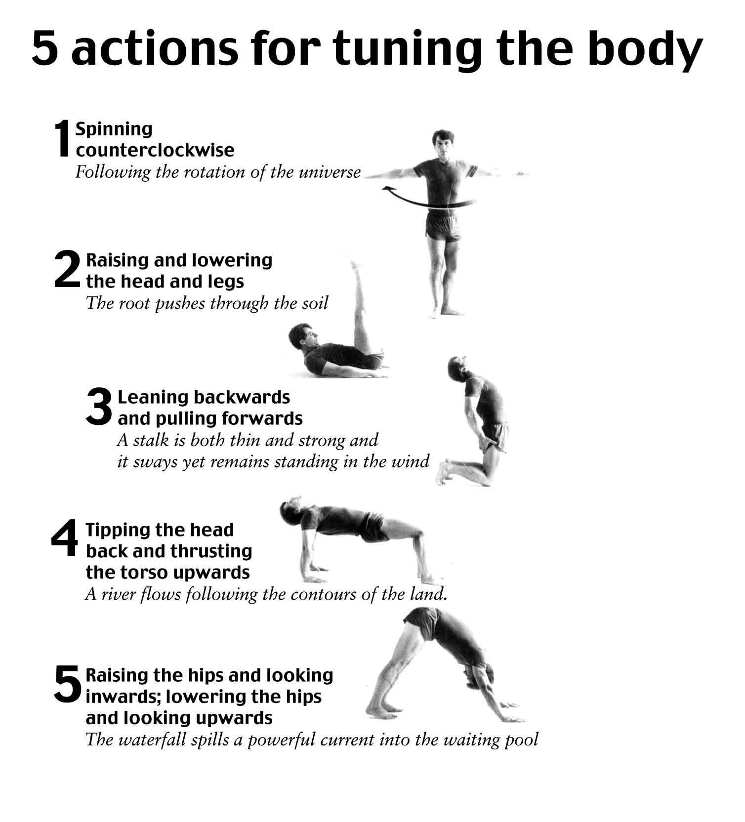Image result for images of tibetan exercise