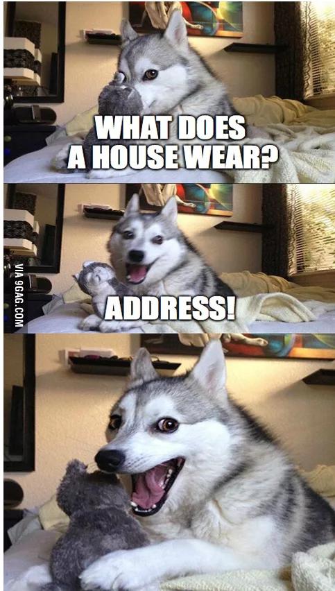 Cheesy pun dog