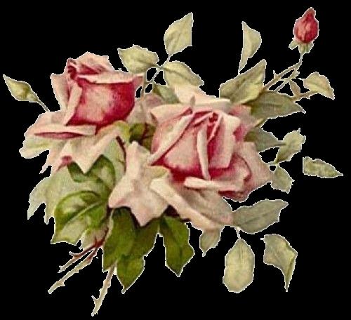 pingl par pathy by sur au nom de la rose pinterest rose. Black Bedroom Furniture Sets. Home Design Ideas