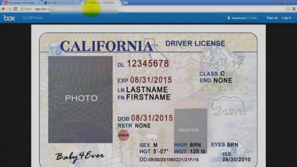California Drivers License Template Simple California Drivers License Template Runnerswebsite Of California Drivers License Template Free Popular California Dri Id