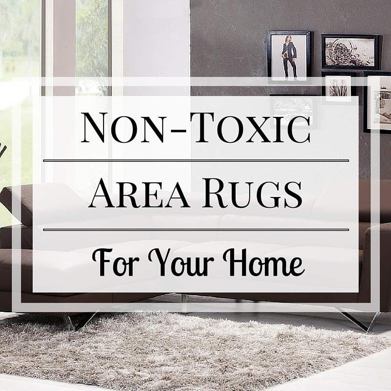 Non Toxic Area Rugs For Your Home Home Rugs Area Rugs Nature Decor