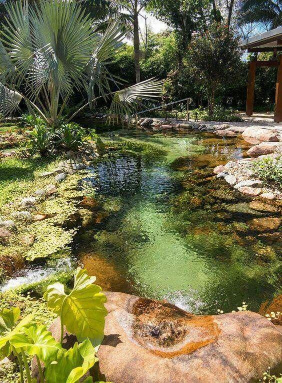 koi pond ponds backyard