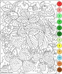 Image result for color by number pages for adults paint by
