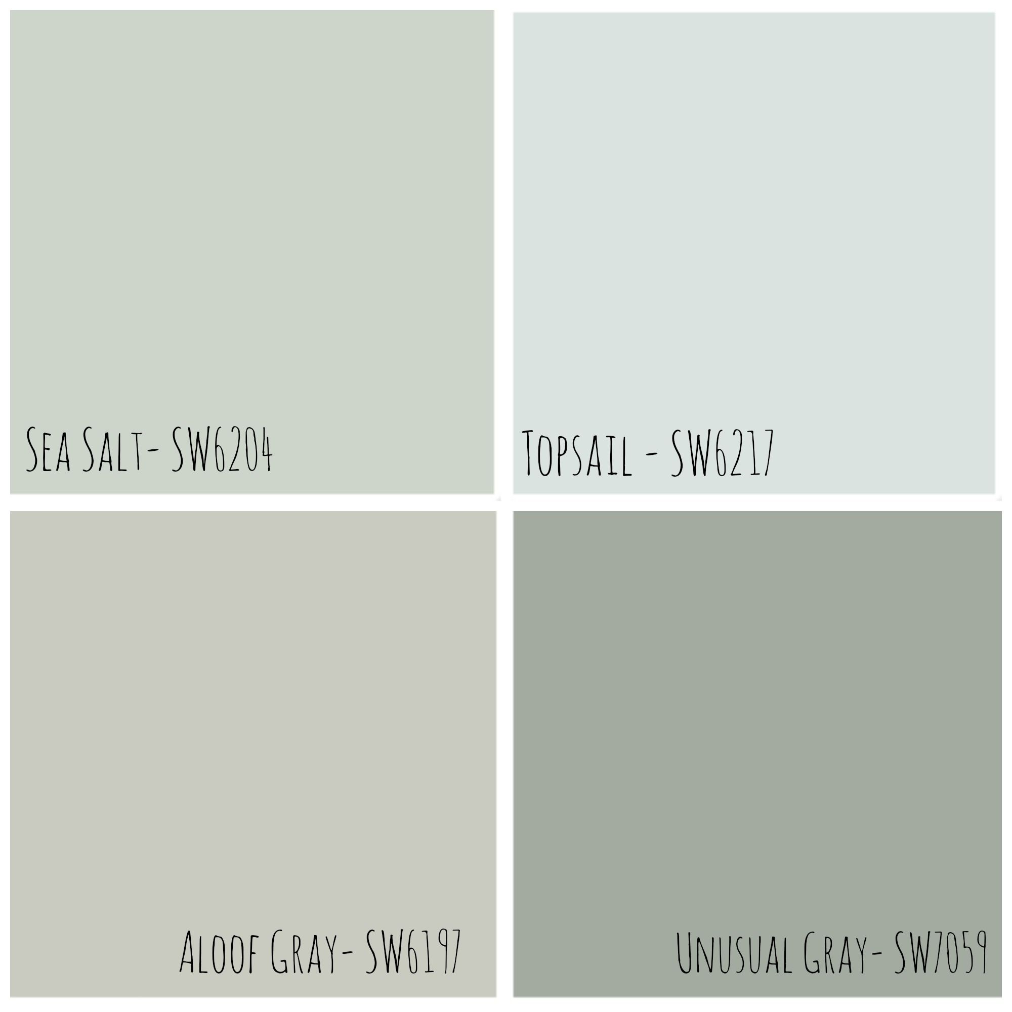 Sea Salt Sherwin Williams Kitchen Google Search For The Home Pinterest