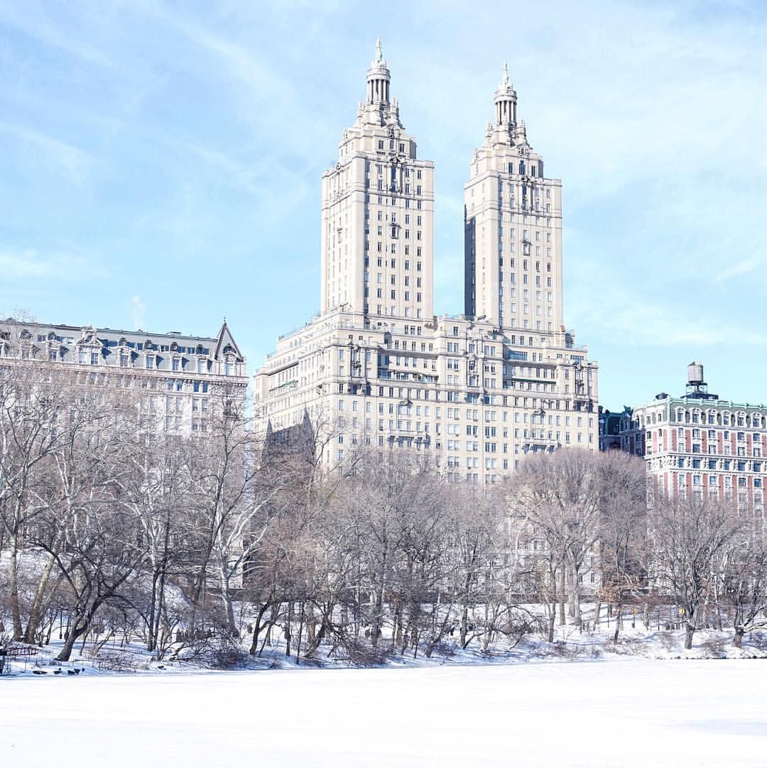 Snow dusted Central Park