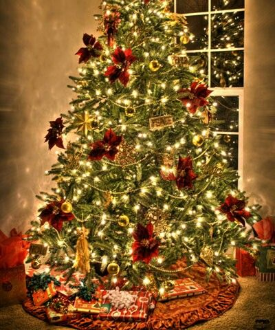 Pretty xmas tree | Christmas trees pictures | Pinterest | Christmas ...