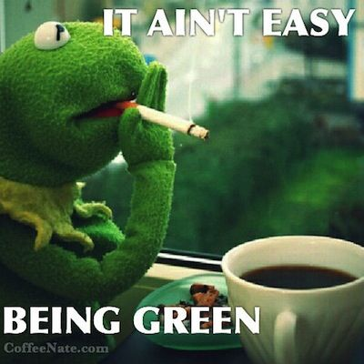 Kermit The Frog It Ain T Easy Being Green
