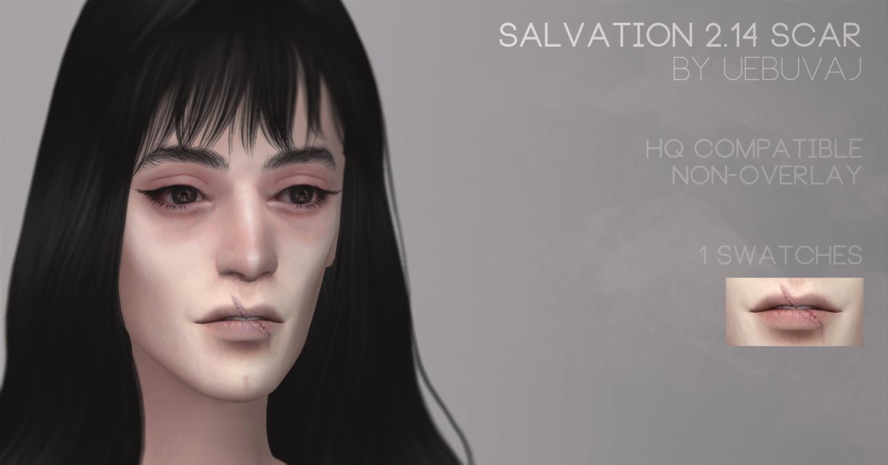 Vazhna lish\' stepen\' iskrennosti , Salvation 2.14 scar   Sims 4 ...