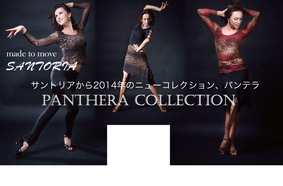 社交ダンス衣装・ドレスの人気ブランド通販   ボールルームネット
