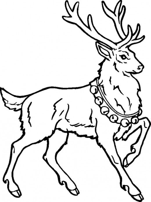 Male Reindeer Coloring Page