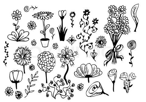 Stock vector of hand drawn flowers isolated on the white background stock vector of hand drawn flowers isolated on the white background mightylinksfo