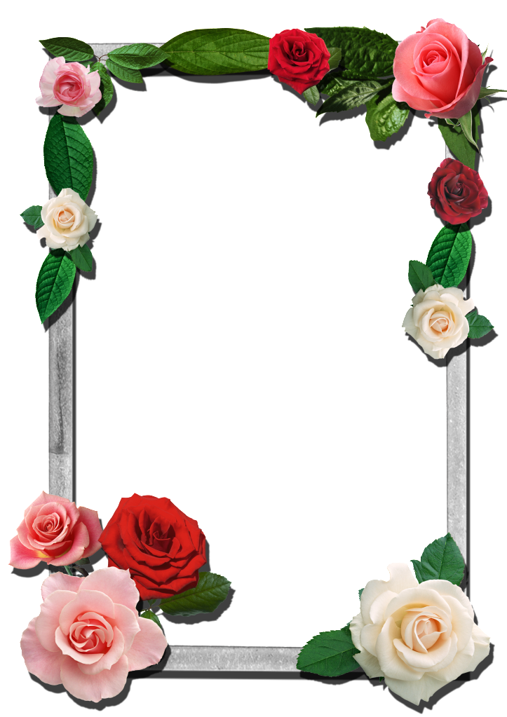 Roses Photo By Razadelumina Photobucket Flower Frame Png Flower Frame Boarders And Frames