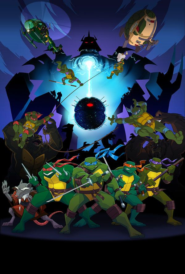 Turtle Decorations Party