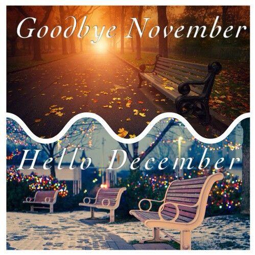 Goodbye November Hello December Quote December December Quotes