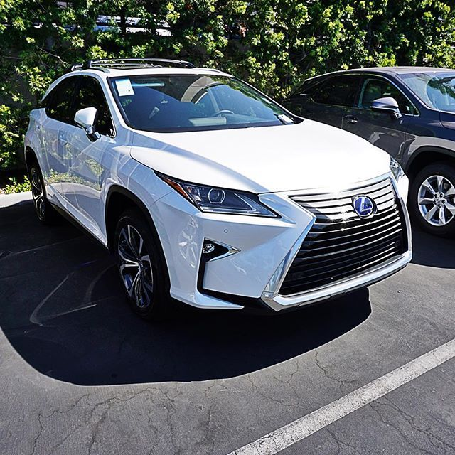 Www.newportlexus.com Working On Its Tan For Labor Day