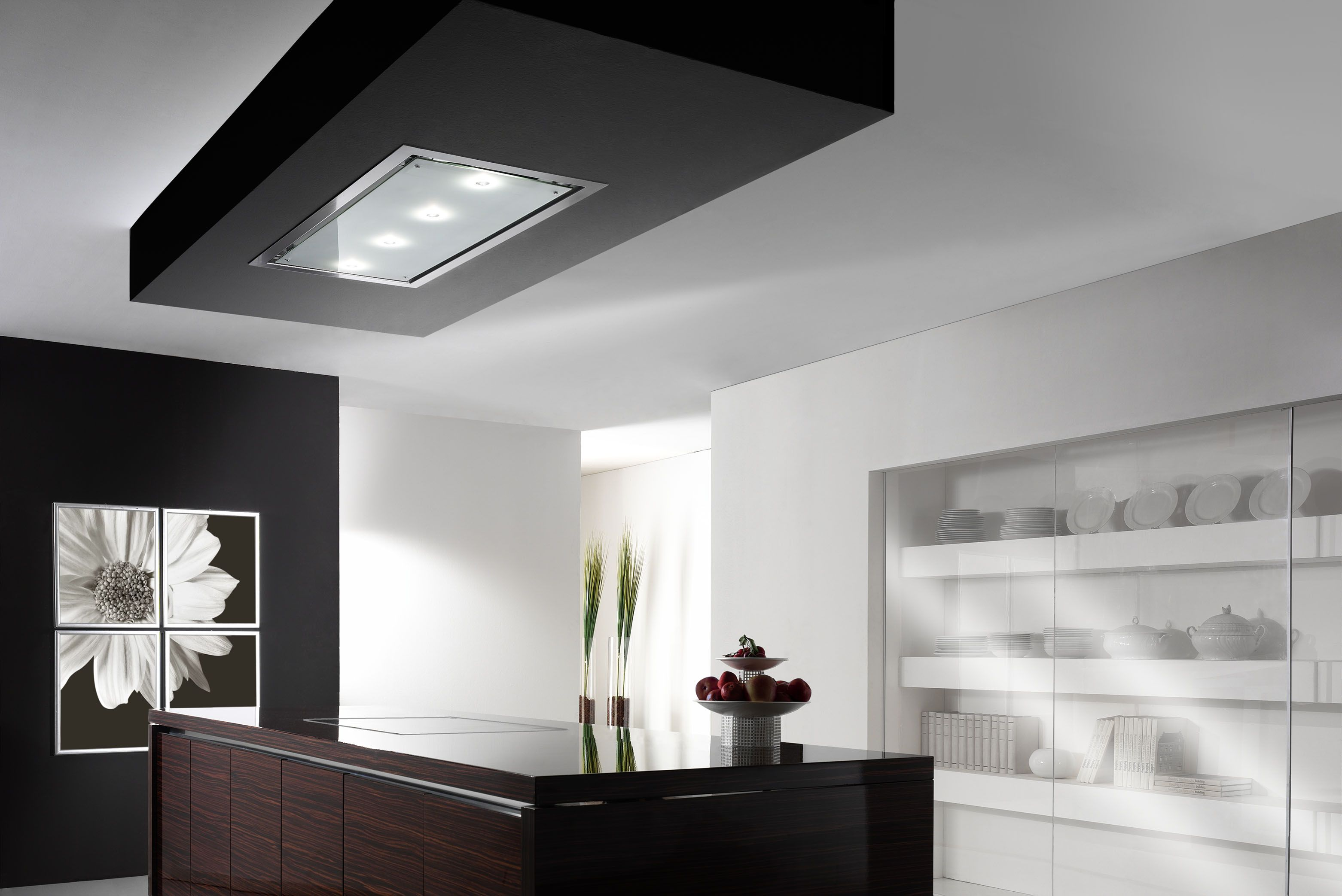 eisinger cover line the ceiling mounted extractor hood with class kitchen designs. Black Bedroom Furniture Sets. Home Design Ideas
