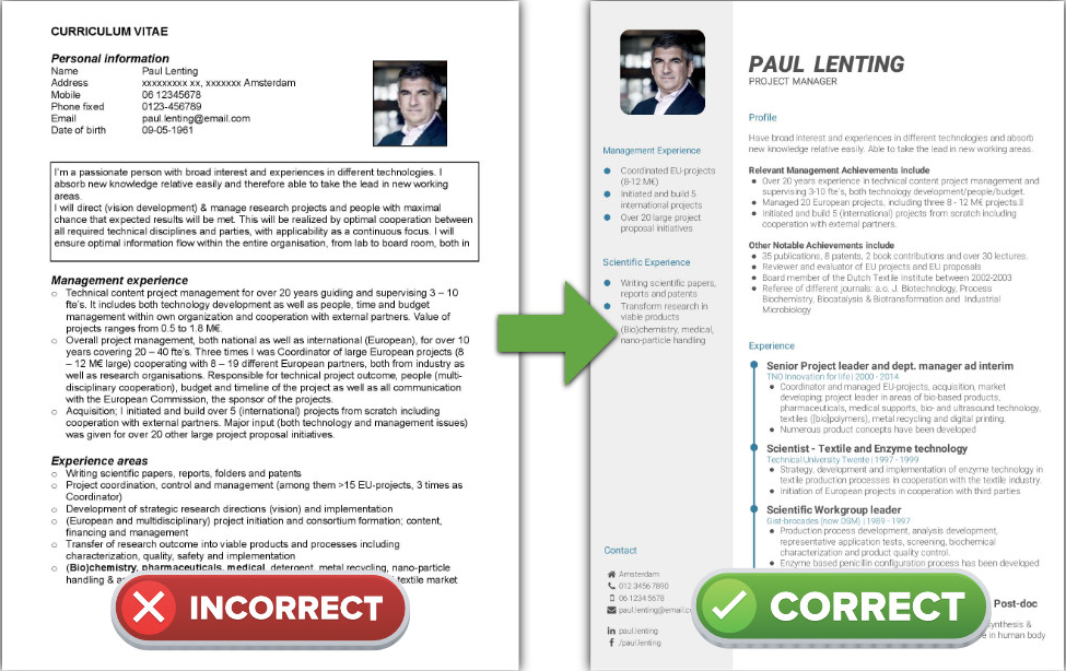 How To Create A Professional Resume Cv 6 Common Mistakes In Resume Writing A Cv Cv Template Best Cv Formats