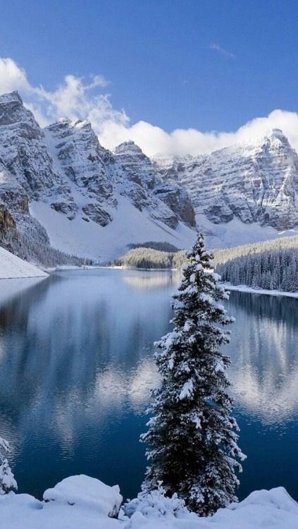 White Cotton Tie Spot Print Top Winter Wallpaper Winter Pictures Winter Scenery