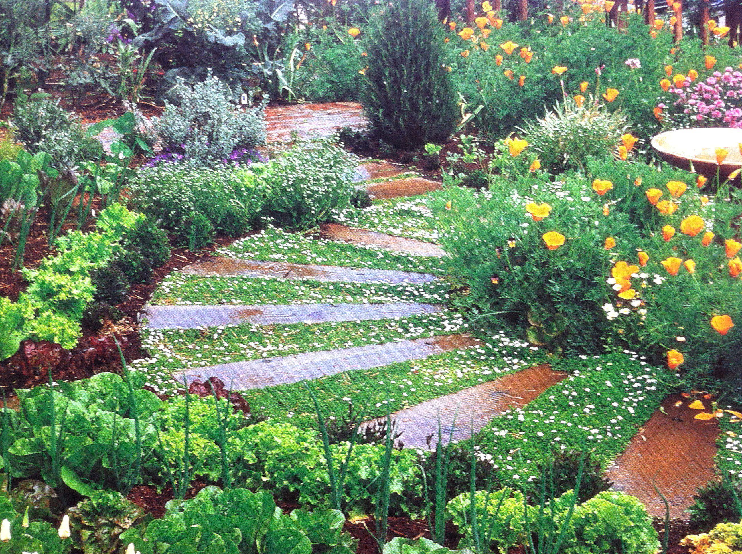 Pin By Austin Hart On Outdoors Garden Flower Beds Flower Garden Design Backyard Flowers Garden